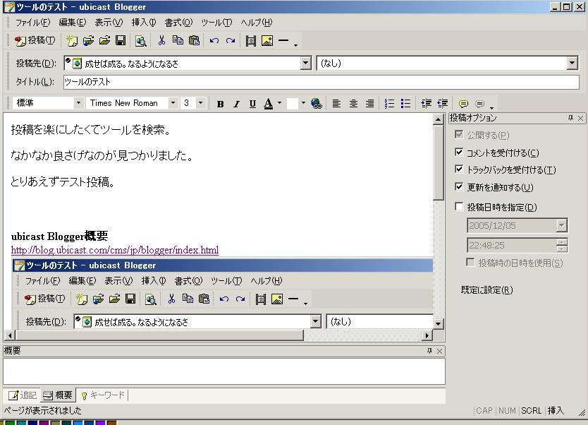 2005-12-05_ubicast-Blogger.JPG