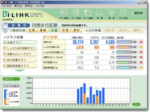 BI-LINK-月間集計